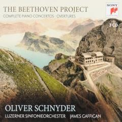 The Beethoven project (3)