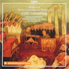 Cello concerto op.67 in b minor