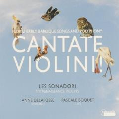 Cantate violini! : Florid early baroque songs and polyphony