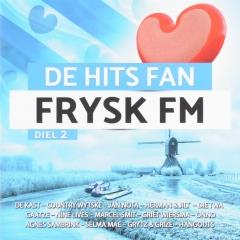 De Hits Fan Frysk Fm Vol2 Muziekweb