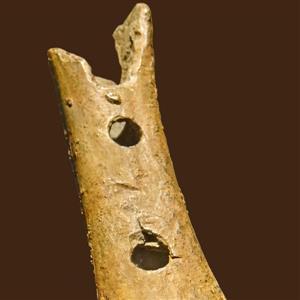 Curiosa klassiek: prehistorische muziek