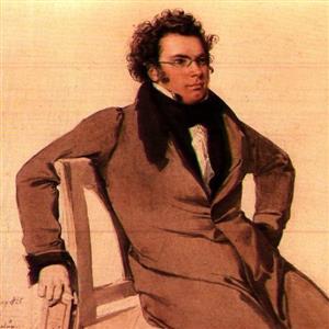 Basiscollectie klassiek: Franz Schubert