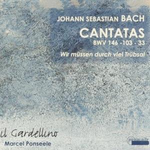 Met Bach door het jaar (30): Troost en liefde