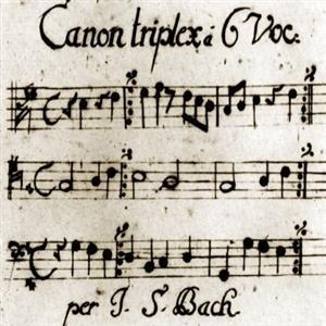 Basiscollectie klassiek : Bach als erfgenaam en erflater van de meerstemmige muziek